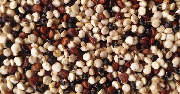 Quinoa ist glutenfrei und gesund